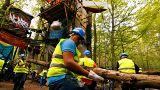 Arbeiter entfernen Äste und umgefallene Bäume im Hambacher Forst.