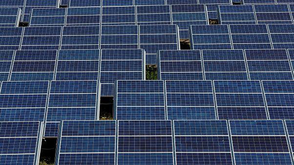 1600 darabos napelemparkot hoztak létre Baranya megyében