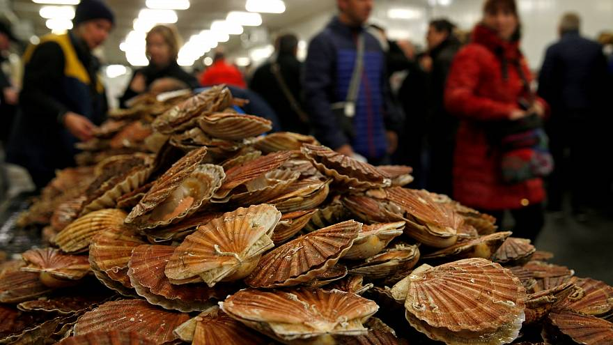 Why scallops are a symbol of European integration, not division