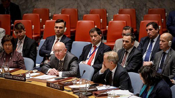 Совбез ООН: с выводами по делу Скрипалей согласны
