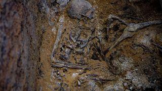 Meksika'da yeni toplu mezar vakası: 166 kafatası bulundu