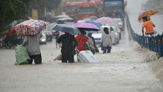 Doğal afetlerin vurduğu  ülkeler yaralarını sarmaya çalışıyor