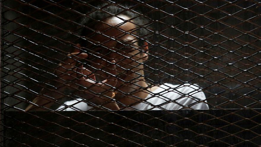 شوكان خلف القضبان