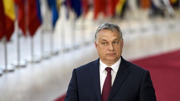 Article 7 sanctions: What does the Sargentini report accuse Hungary of?