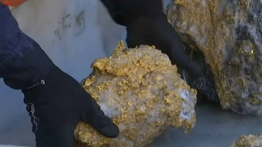 شركة تعدين كندية تكتشف صدفة صخوراً تحوي نحو 300 كيلوغرام من الذهب