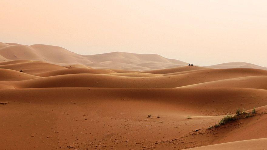 دراسة: الصحراء الكبرى تتحول إلى مساحات خضراء عن طريق الشمس والرياح ولكن..
