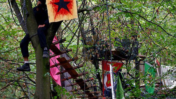 Le capanne costruite dai militanti ecologisti nella foresta di Hambach