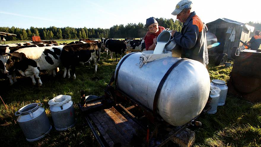 ABD'den süt ürünleri ithalatı yeniden başladı, Bakanlık haberlere tepki gösterdi