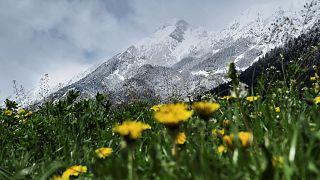 Felgyorsult az örök hótakaró eltűnése Svájcban