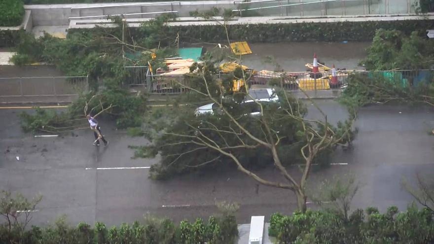A driver removes a fallen tree during Typhoon Mangkhut in Hong Kong