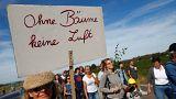 Hambacher Forst: Tausende protestieren gegen Abholzung