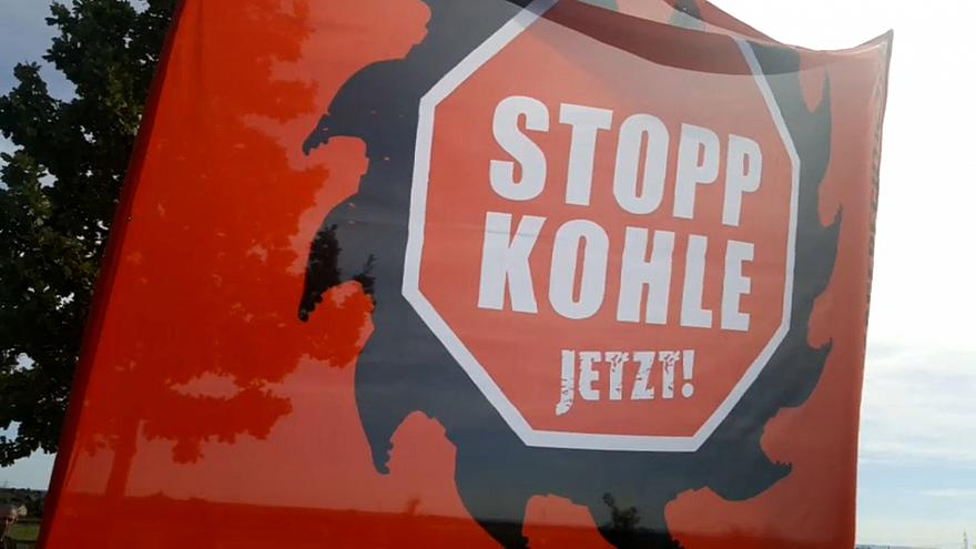 В защиту леса Хамбах