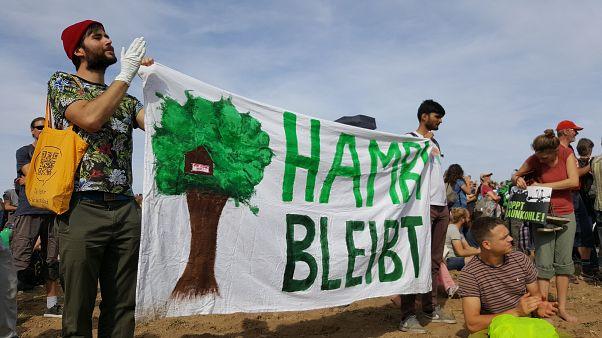 Greenpeace-Chef nennt Euronews Datum für Kohleausstieg: 2030 sollte Schluss sein