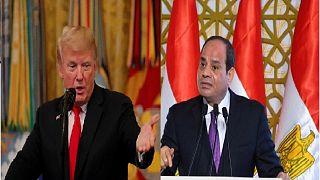 كيف تواجه مصر الأخبار المزيفة؟