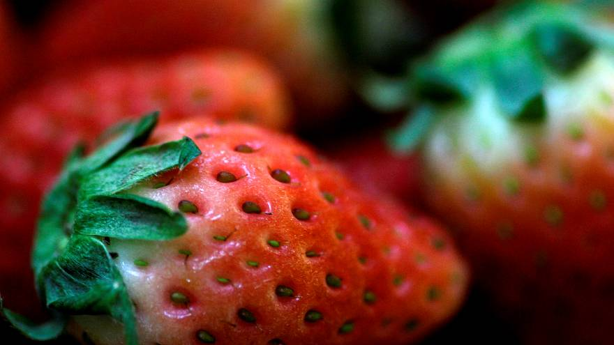 How serious is the scare over needles found in Australian strawberries?| Euronews answers