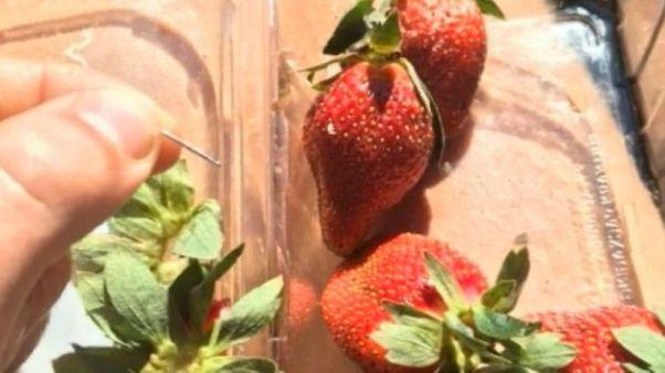 Australie : des fraises très piquantes