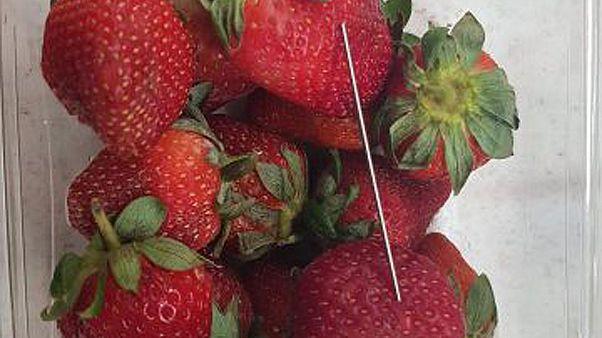 Australien, Neuseeland: Wie kommt die Nadel in die Erdbeere?