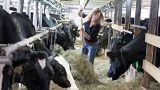 """""""Fair-Food""""-Referendum: Schweizer streiten ums Essen"""