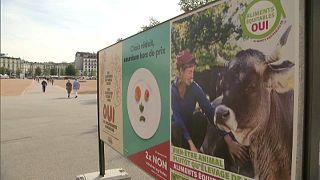 Élelmiszer-kérdésekről és bringautakról is szavaznak Svájcban