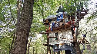 Baumhaus im besetzten Hambacher Forst