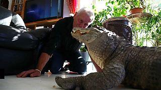 Ali und Gator - Franzose (67) sammelt Reptilien als Haustiere
