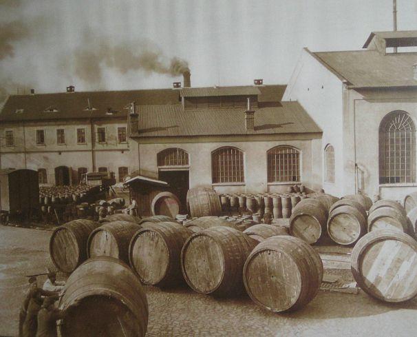 Devrim Hacısalihoğlu