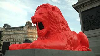 Roaring art: 'Please Feed the Lions' in Trafalgar Square
