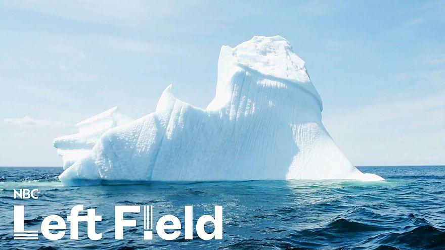 'Iceberg tourism': Newfoundland's new-found livelihood