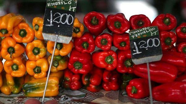 آیا ارزش غذایی فلفلهای رنگی یکسان است؟