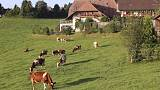 Swiss voters reject more aid for farmers