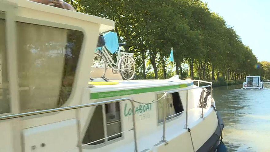 Frankreich: Canal du Midi bald ohne Platanen?