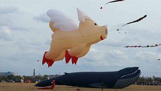 Fliegende Schweine und Teddys am Berliner Himmel