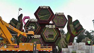شاهد: الأزهار تكسو شوارع بكين احتفالا بالعيد الوطني