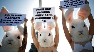 Pariser Modewoche: Peta-Aktivisten fordern pelzfreie Laufstege