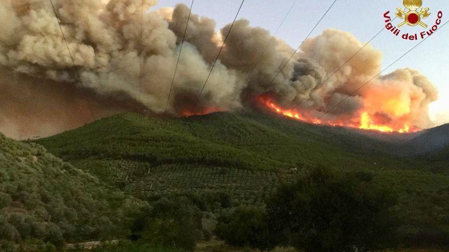 Fire on Monte Serra in the province of Pisa