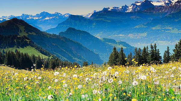 Switzerland is a landlocked alpine country.