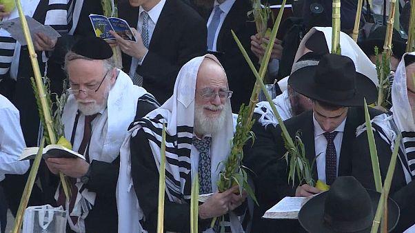 Ağlama Duvarı'nda Yahudilerin Sukot bayramı