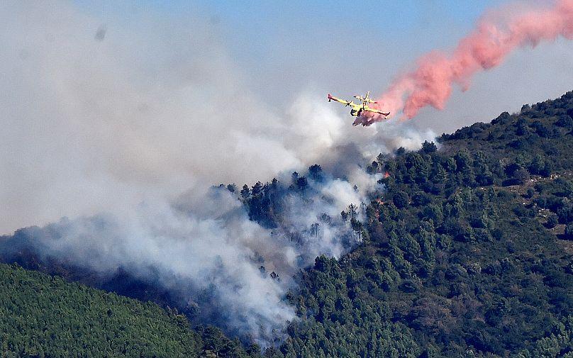 REUTERS/Maurizio Degl'Innocenti
