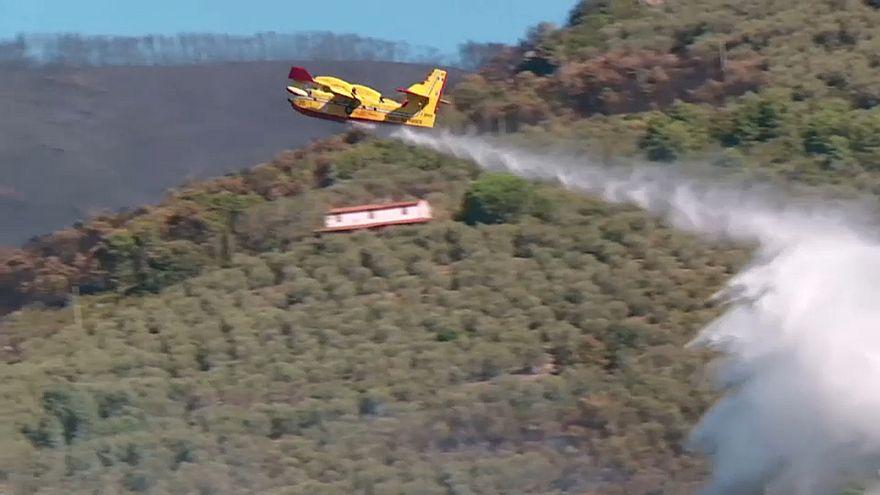 شاهد: حرائق الغابات مستمرة في إيطاليا ومتطوعون يحاولون اخمادها