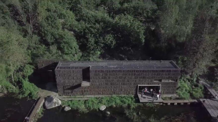 En Chine, une étonnante bibliothèque perdue dans la forêt