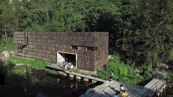شاهد: مكتبة خشبية في وادي بالصين ينتظر القراء دورهم بالصفوف