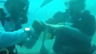 شاهد: مصري وبريطانية ...قصة حب انتهت تحت الماء!