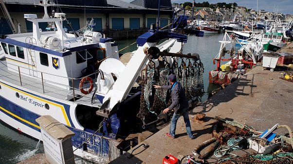 Ouverture de la pêche à la coquille Saint Jacques dans un climat apaisé