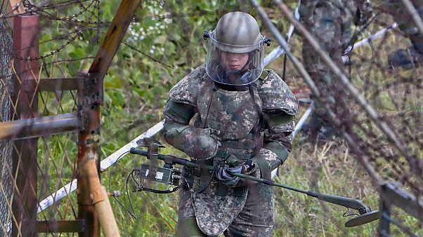 البدء في إزالة الألغام من المنطقة العازلة بين الكوريتين.. أول بادرة للانفراج بين البلدين