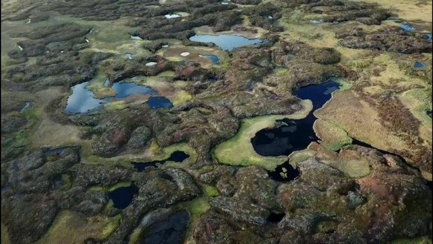 Darum verschwindet Schwedens einzigartige Permafrost-Landschaft