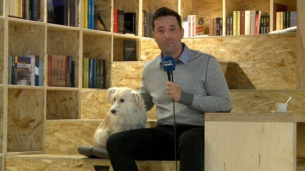 """Этолог: """"у каждого ребенка должна быть собака"""""""