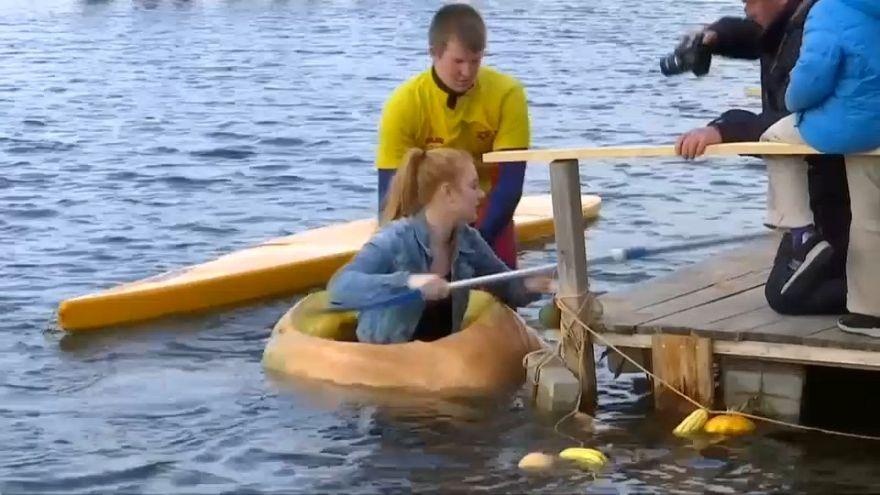 شاهد: قوارب تجديف من حبات القرع الضخمة تصنع بهجة الألمان