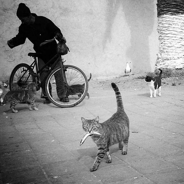 Photo by Ekin Kucuk