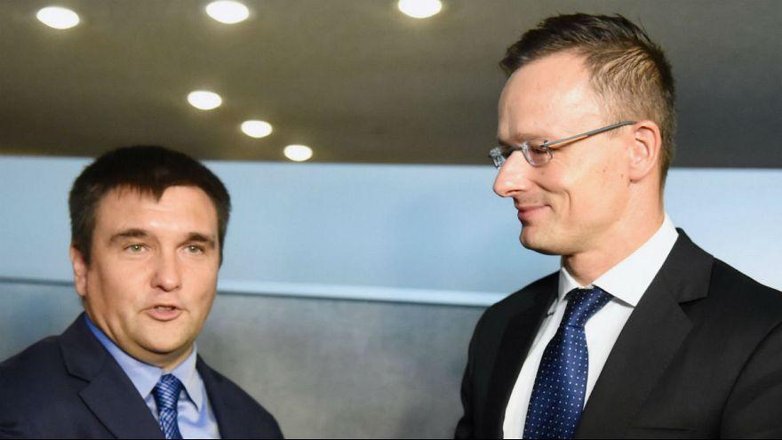 """""""Nem kívánatos"""" a beregszászi magyar konzul"""