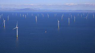 Rüzgar enerjisi çevreye tahmin edilenden daha zararlı